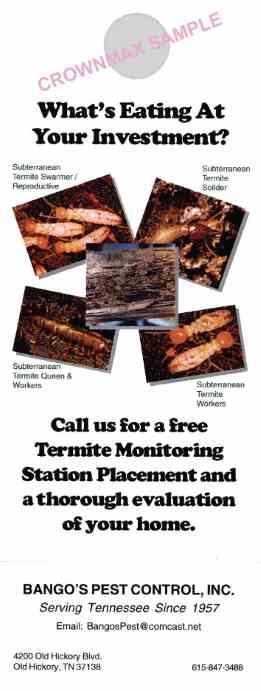 8231 Termite Doorhanger