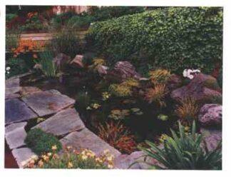 3537 Landscaping - Pond