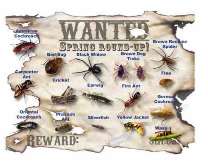 2602 Wanted Postcards