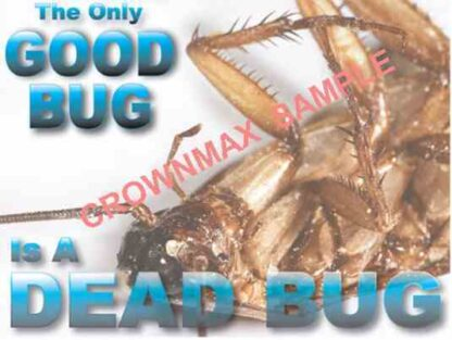 2542 The Only Good Bug Is A Dead Bug!