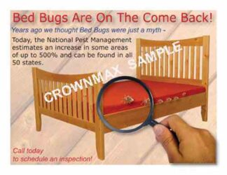 2539 Bed Bugs - On the come back!