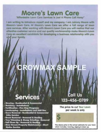 2537 Lawn Care Flyer