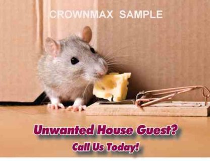 2525 Unwanted House Guest?