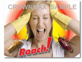 2520 Roach !