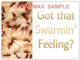 2303 Got That Swarmin' Feeling?