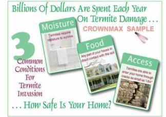 2301 3 Common Conditions For Termite Invasion