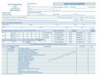 2279 Mold Analysis Report