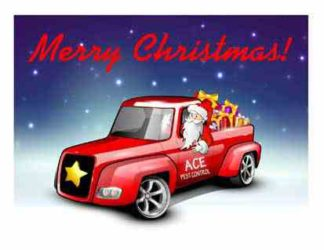 1242 Merry Christmas Truck - Santa