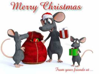 1274 Merry Christmas - Mice w-presents