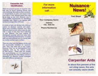1252 Carpenter Ant Brochure