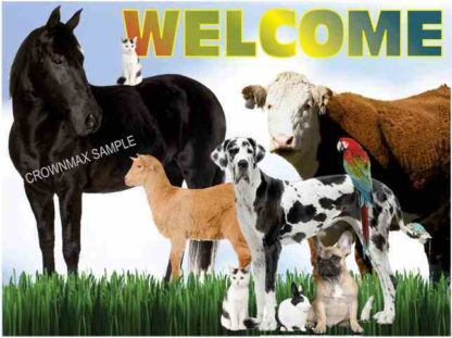 1104 Welcome Postcard - Large Animal