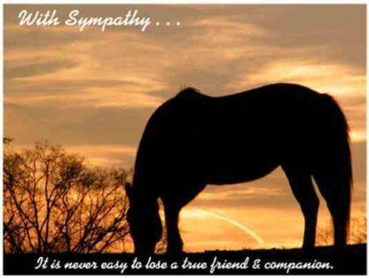 1110 With Sympathy Postcard