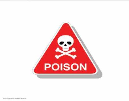 21336 Poison Red Skull On White Background