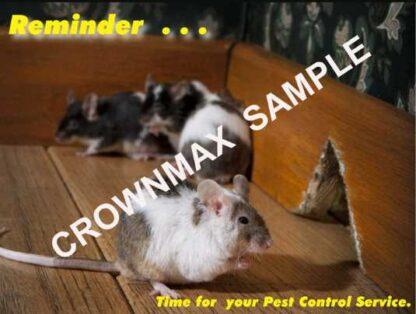 2307 - Pest Control Service