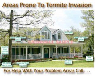 2300 Areas Prone To Termites