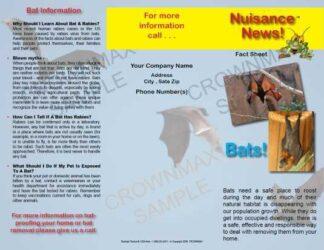 1204 - Bats Brochure