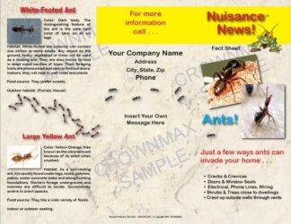 1201 - Ants Brochure