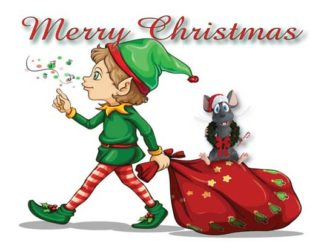 1277 Merry Christmas - Elf with gift bag & mouse